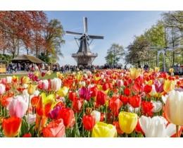 Parco Keukenhof Amsterdam