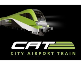 City Airport Train Cat