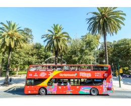 Malaga City Sightseeing + Music Museum