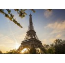 Tour Eiffel - dinner and priority access