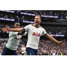 Tottenham Hotspur matches