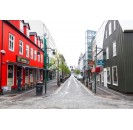 Reykjavik Live Virtual Tour Live with Private Guide