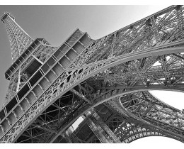 Summit Eiffel Tower admission - priority access