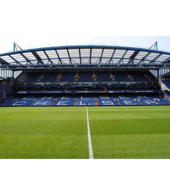 Chelsea Stadium and Tour