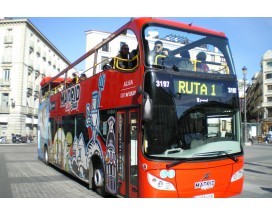 Madrid City Sightseeing